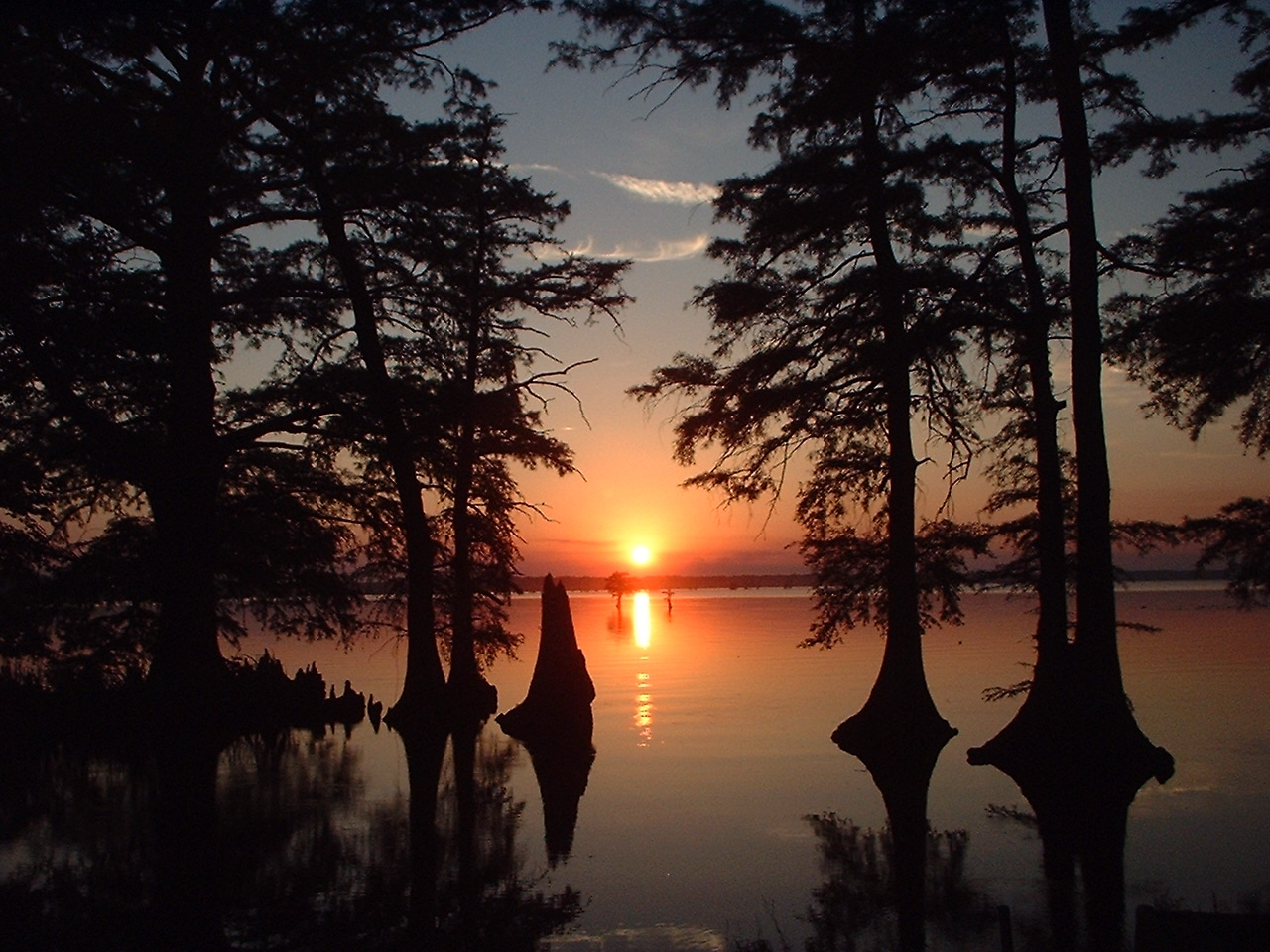 Reelfoot Lake Sunset